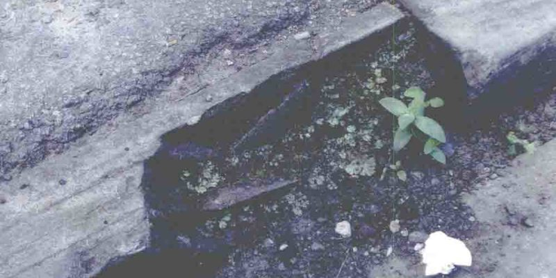 Council agrees £120,000 damages for woman forced to give up work after falling on damaged kerbstone