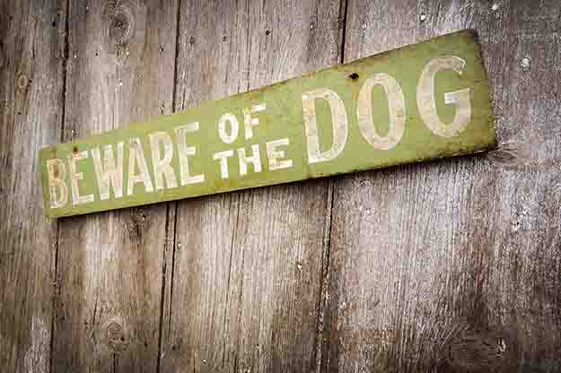 beware of the dog sign on wood fence