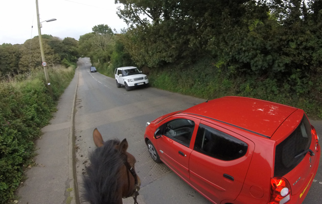 Horse riding accidents on the road
