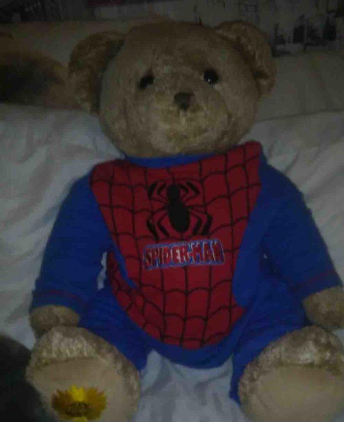 Memory teddy